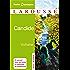 Candide (Petits Classiques Larousse t. 19)
