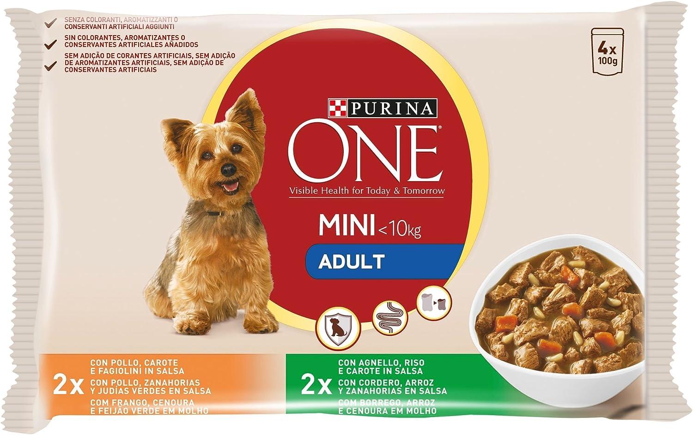 Purina ONE MINI comida para perros húmeda en Salsa Perro Adulto Pollo y Cordero 10 x [4 x 100 g]: Amazon.es: Productos para mascotas