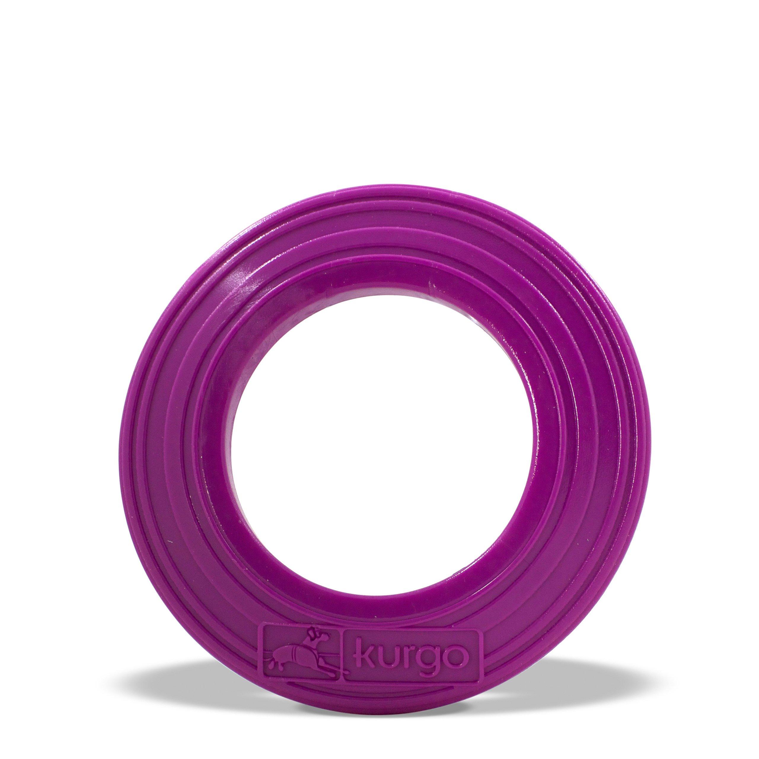 Kurgo Dog Tossing Disc(TM) for Dogs, Just Violet Purple, Regular