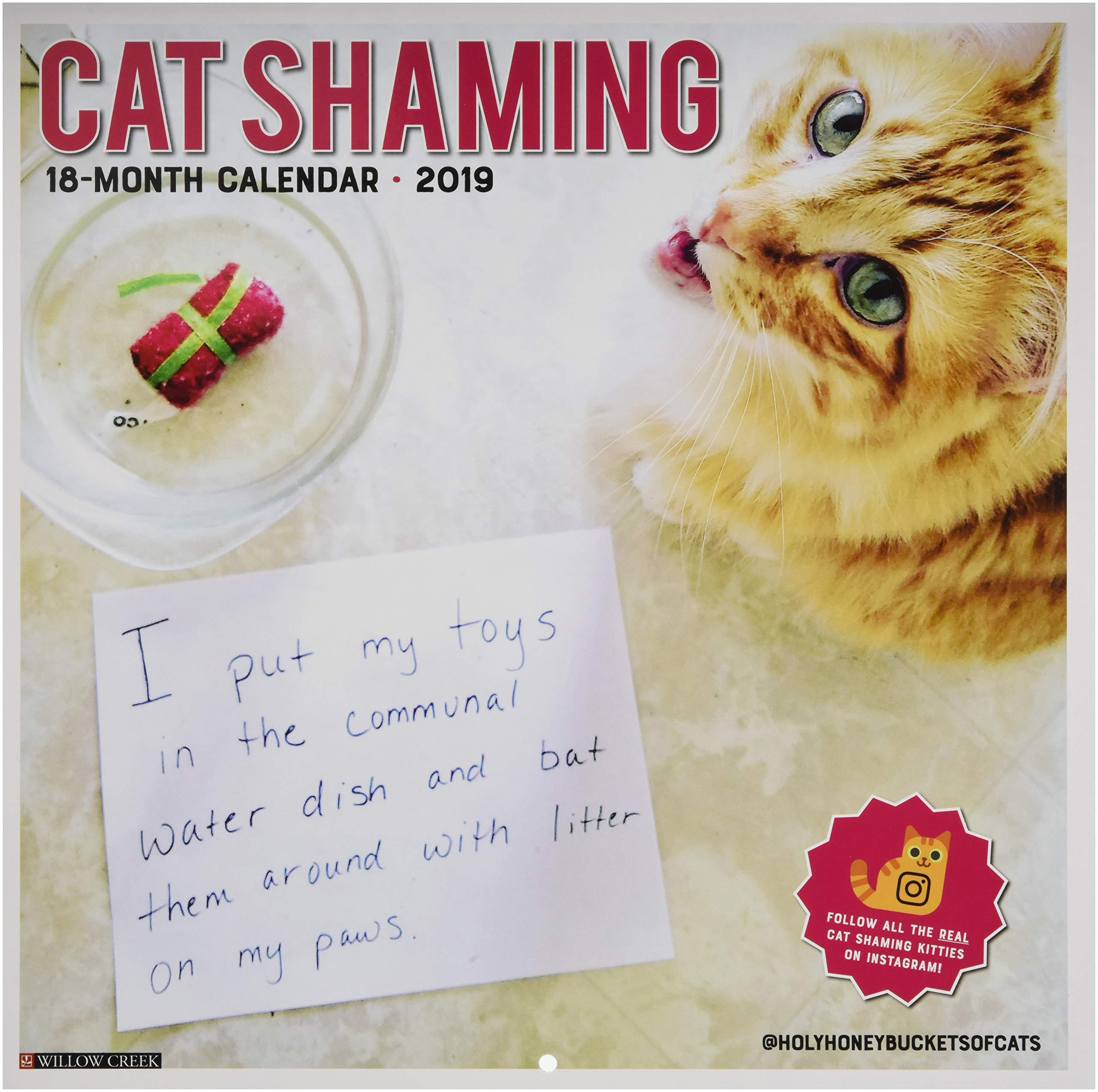 Cat Shaming 2019 Wall Calendar Calendar – Wall Calendar, July 15, 2018 Willow Creek Press 1549200658 Calendars HUMOR / Topic / Animals