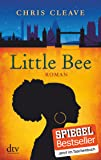 Little Bee: Roman