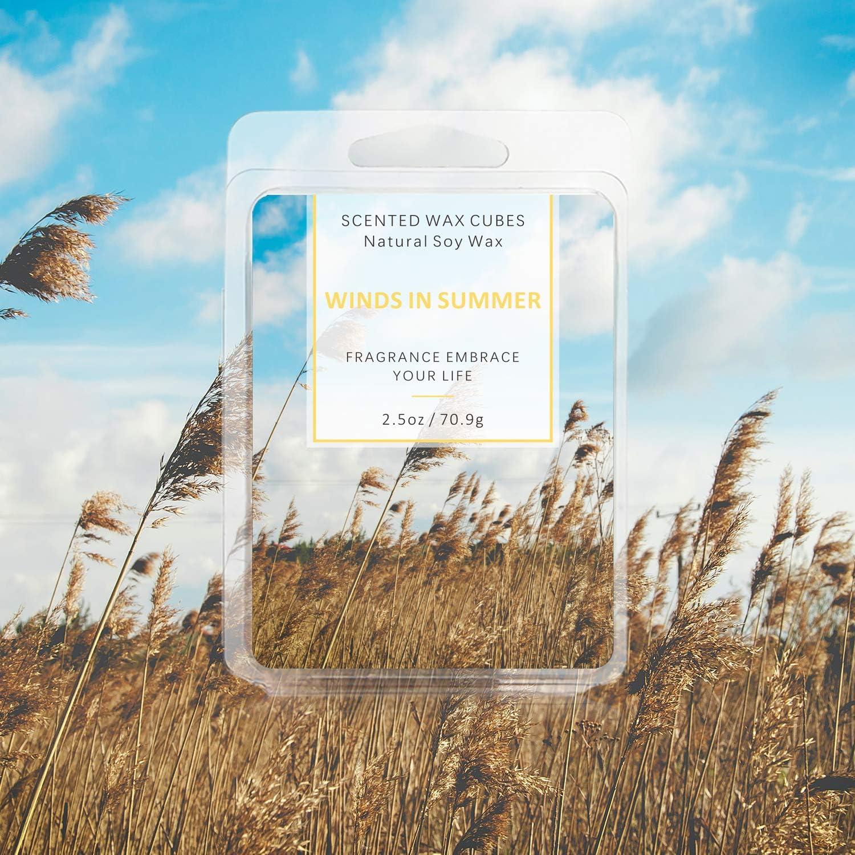 Meeresbrise T/örtchen 100/% Sojawachs Wax Melts f/ür Duftlampe SCENTORINI Duftwachsw/ürfel 70,9g x 4 St/ück B/öhmenwald Wind im Sommer Frisch Leinen