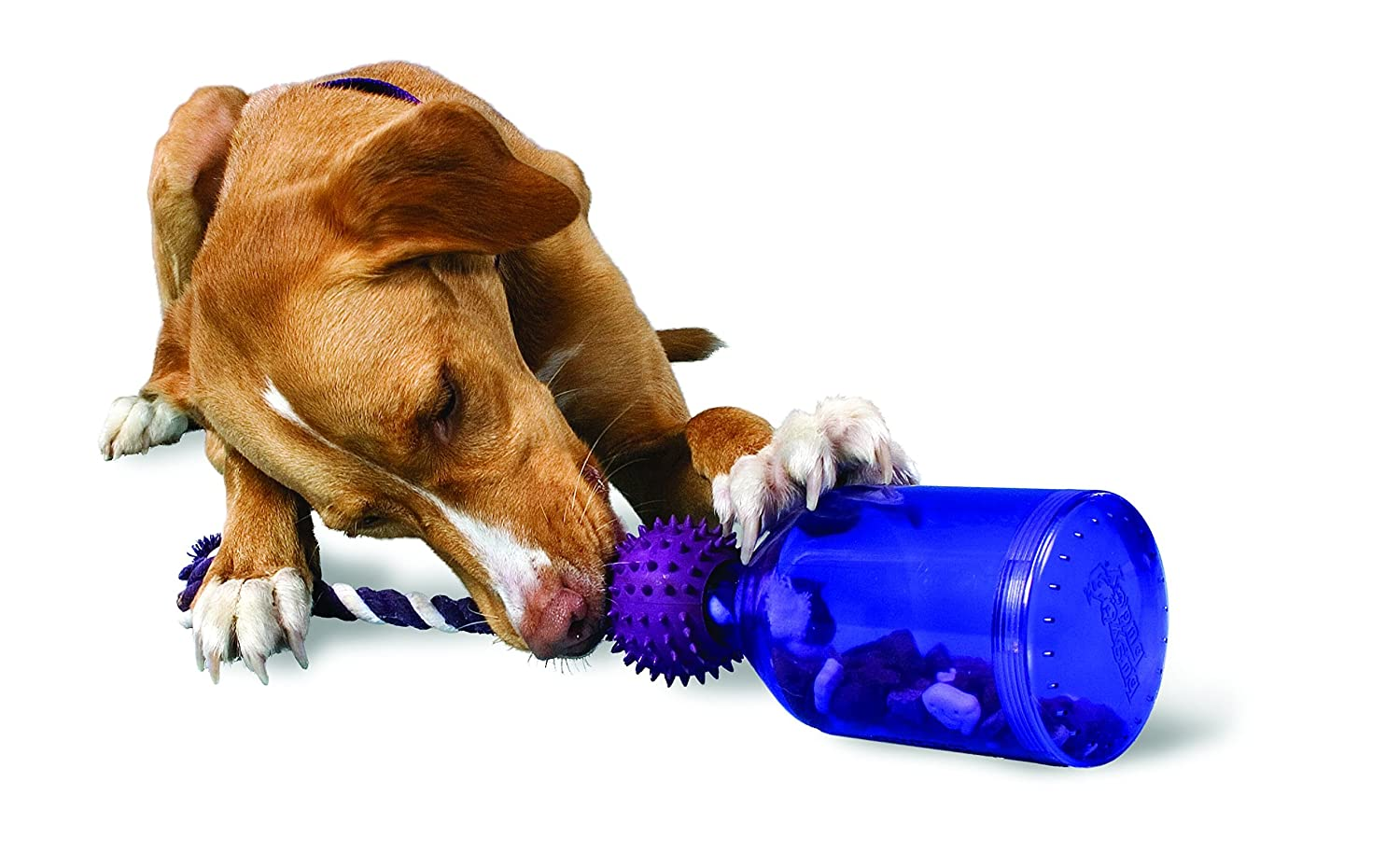 Pet Supplies : Pet Toy Ropes : PetSafe Busy Buddy Tug-A-Jug Meal ... | Best Dog Toys For Heavy Chewers