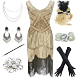 YENMILL 1920s Gatsby Fringed Paisley Plus Size Flapper Dress with 20s Accessories Set