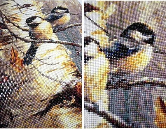 5D Diy Diamond Painting Animal Birds Full Round Diamond Embroidery Cross St G7C8