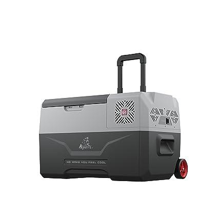 Amazon.es: Nevera para Coche con compresor Portátil Alpicool CX30 ...