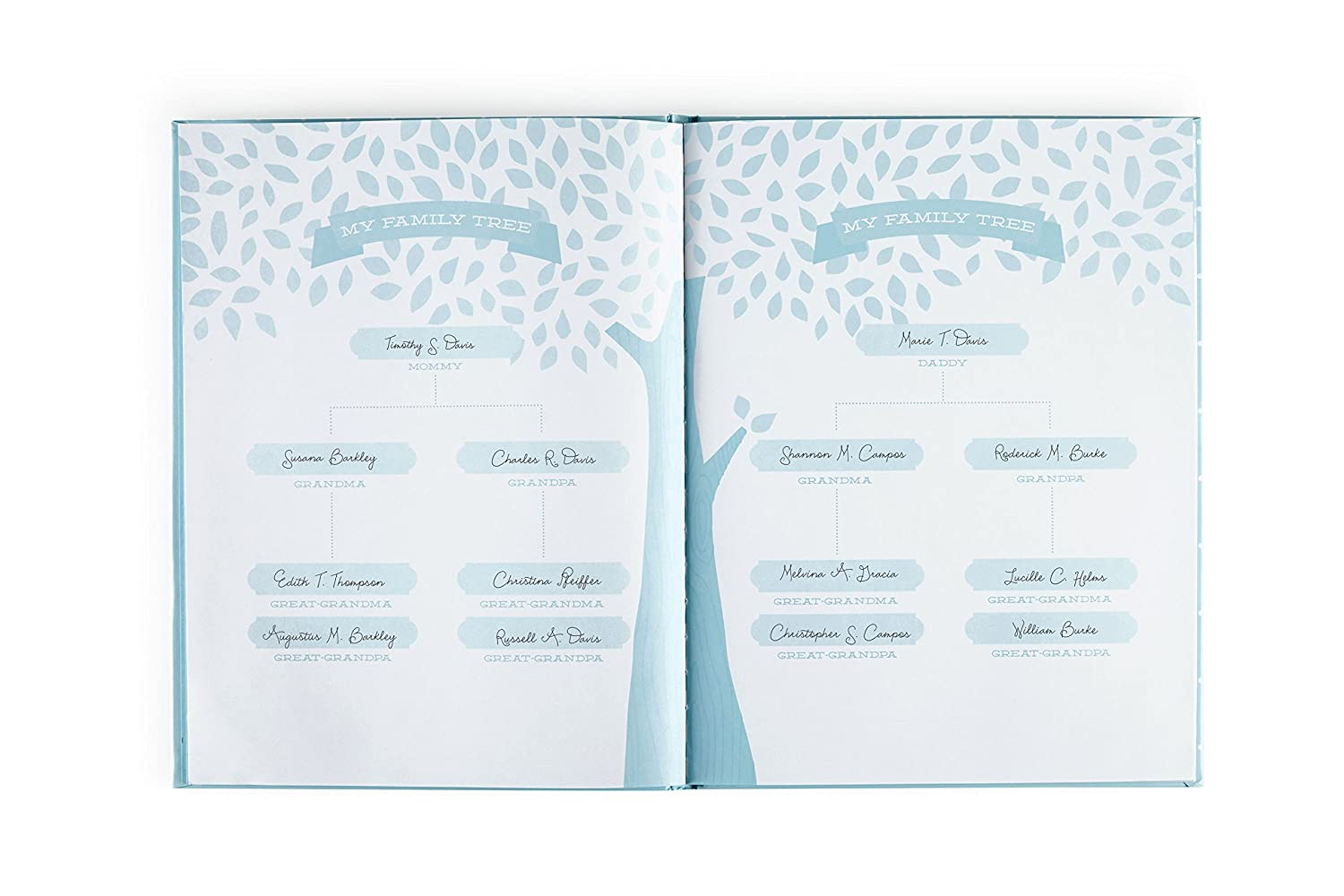 Gray Little Blossoms by Pearhead Little Blossoms Sweet Welcome Keepsake Baby Memory Book