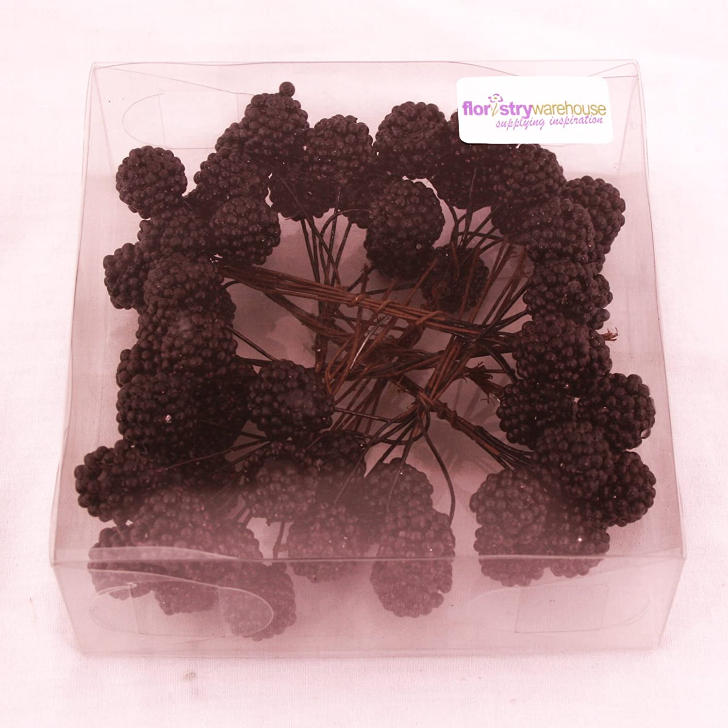 Floristrywarehouse Artificial Fall BlackBerry Pick x 64 in Box Autumn Crafts