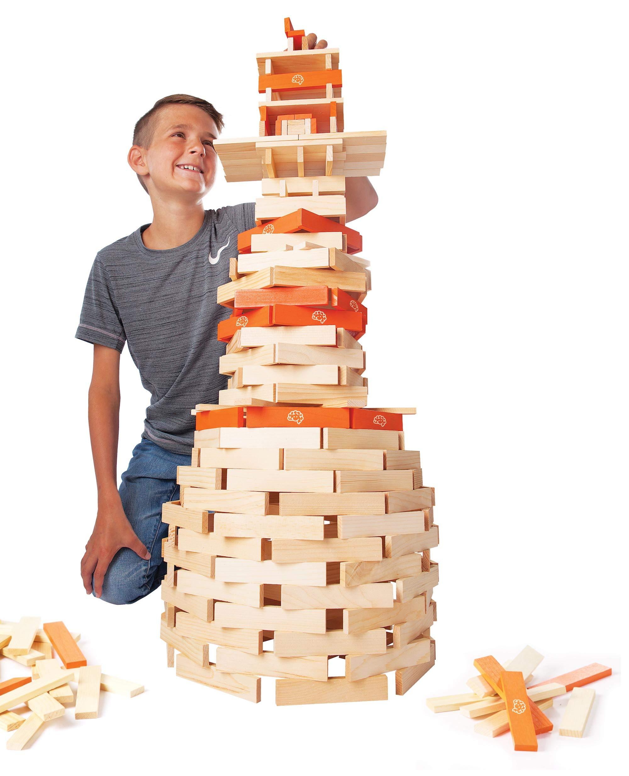 Fat Brain Toys Timber Planks 300 Piece Set