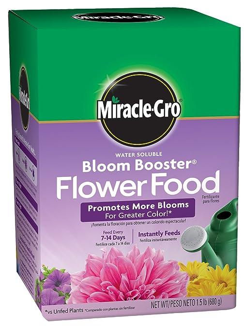 Miracle-Gro Potenciador de floración, soluble en agua flor ...