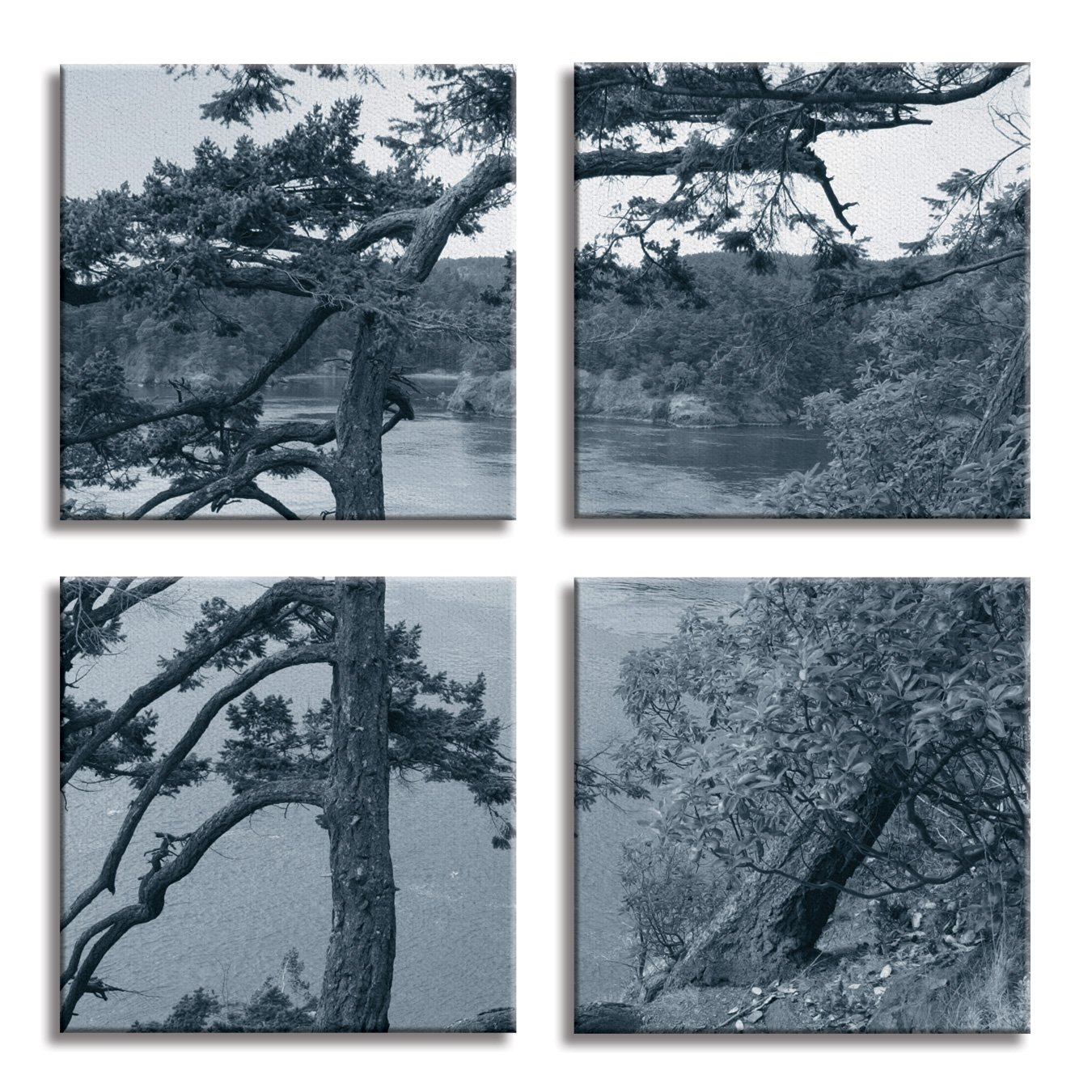 JP London 4 Panels 14in 4 Huge Gallery Wrap Canvas Wall Art Canadian Shield Johns Point Forest Black and White At Overall 28in QDCNV2084