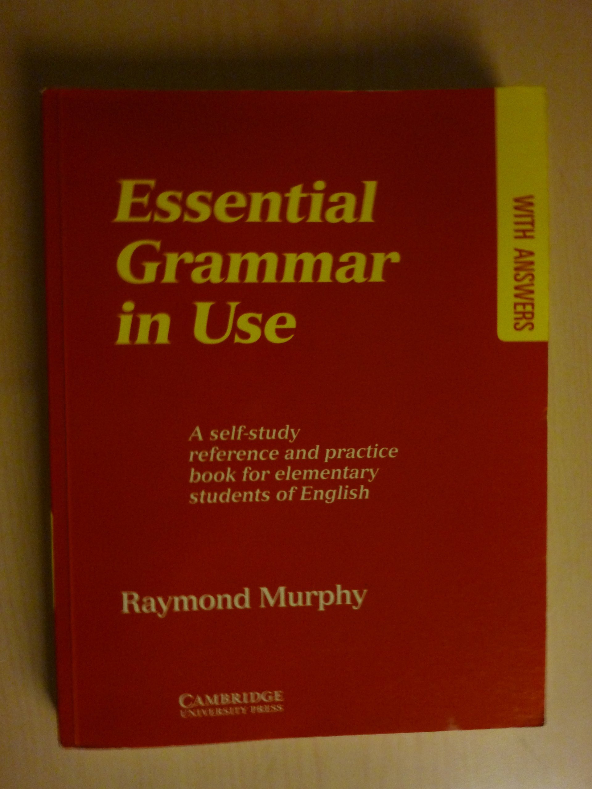 Basic Grammar In Use Raymond Murphy Pdf