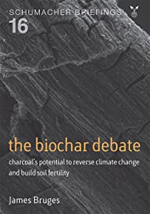 The Biochar Debate: Charcoal's potential to reverse climate change and build soil fertility (Schumacher Briefings)