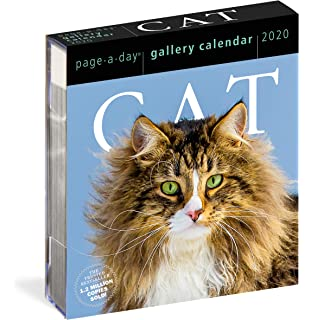 Amazon.com : 365 Cats Page-A-Day Calendar 2019 : Office Products