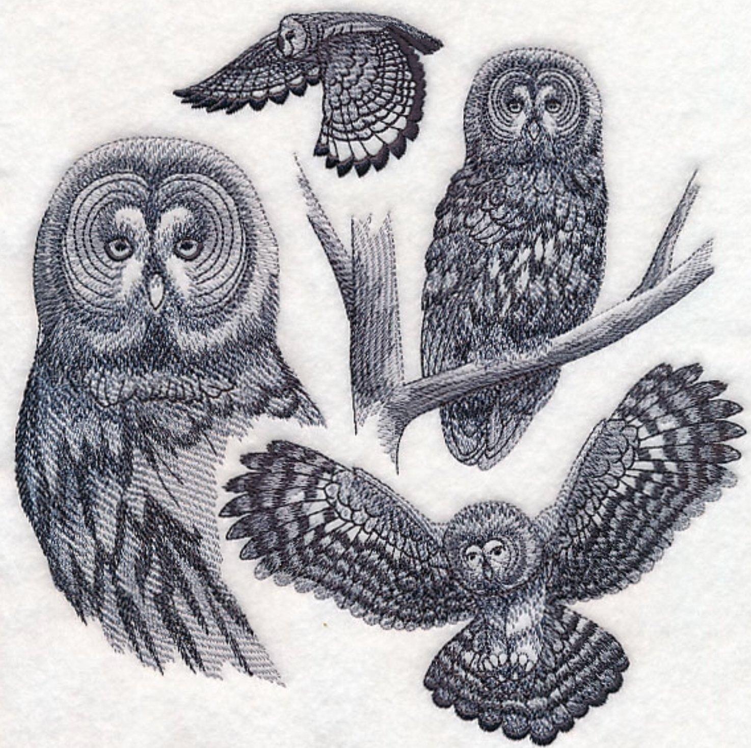 Great Grey Owl Custom Embroidered Sweatshirt Shirt