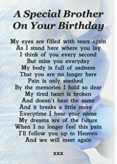 A Special Brother On Your Birthday Memorial Graveside Poem Keepsake Card Includes Free Ground Stake F183