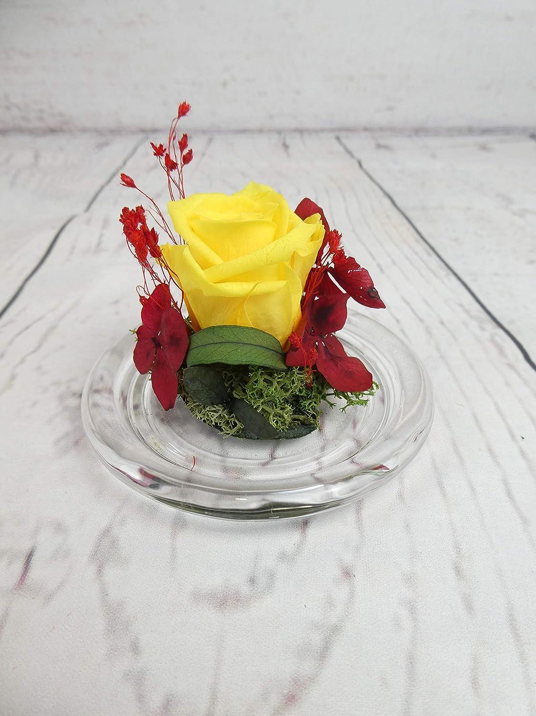Rosa preservada Bandera España - Flores de Jacqueline Valencia: Amazon.es: Handmade