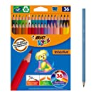 BIC Kids Evolution Colouring Pencils - Assorted Colours, Pack of 36