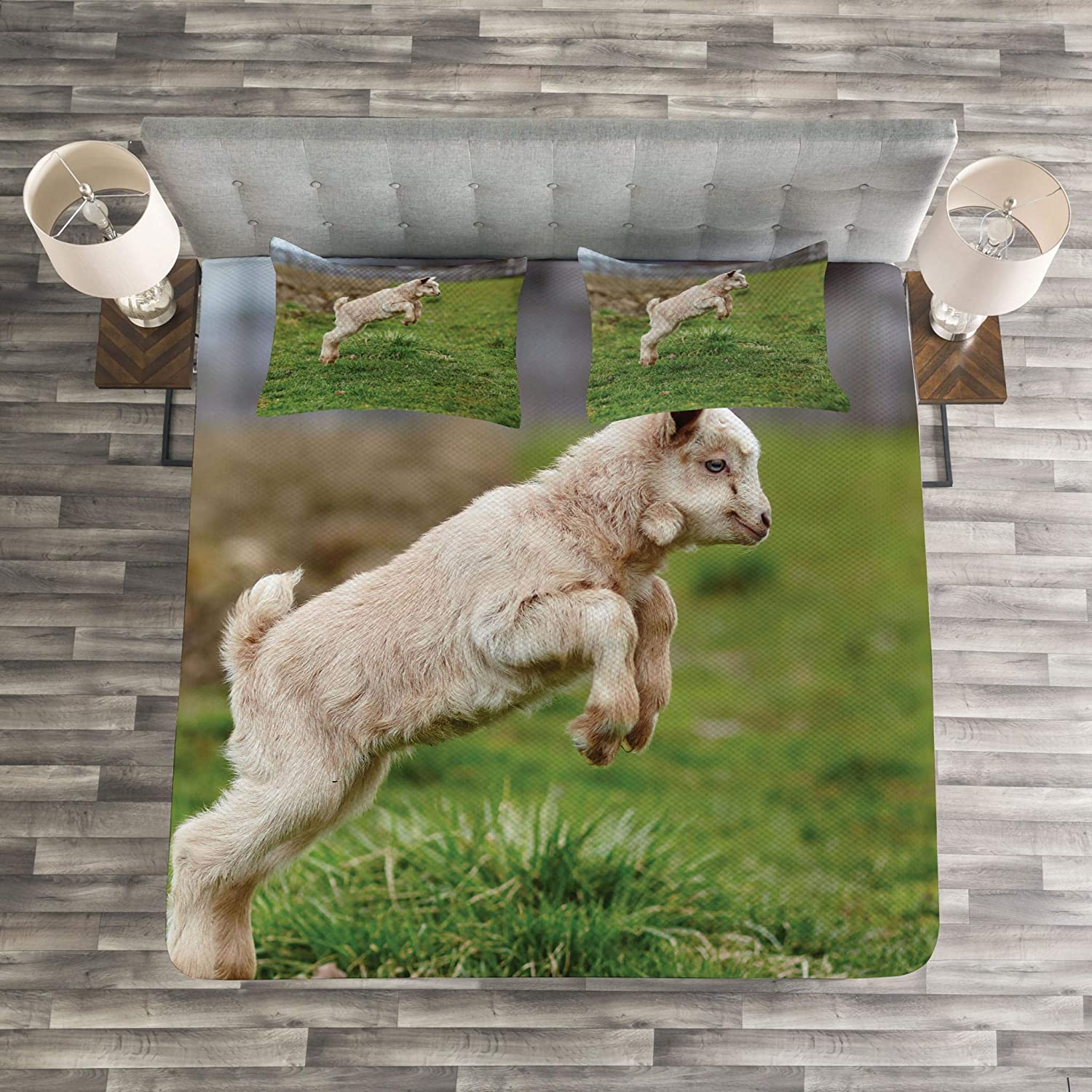 Lunarable Goat Bedspread Set Queen Size Decorative Quilted 3 Piece Coverlet Set with 2 Pillow Shams Beige Brown Fern Green Baby Farm Animal Jumping Around Playing in The Spring Blurred Background