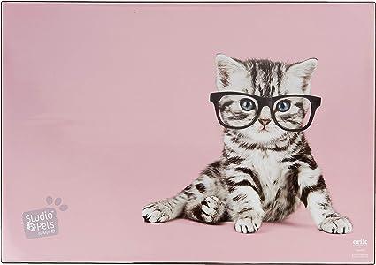 Sottomano Mulitifunzione Studio Pets Cats 49,5x34,5 cm Erik/® ideale come sottomano scrivania o tovaglietta colazione