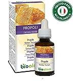 PROPOLI (PROPOLIS) TINTURA MADRE ANALCOLICA BIOALMA. Favorisce il benessere della gola. 100% naturale, senza zuccheri aggiunti. Ideale anche per le donne in gravidanza. (60 ml)