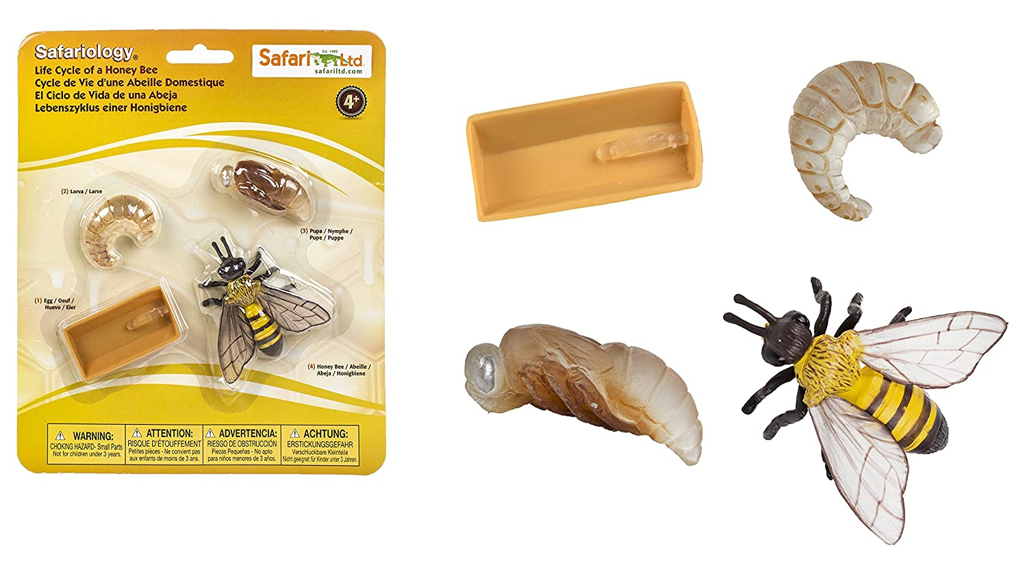 life cycle of a honey be figurines figures