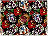 tableau tête de mort mexicaine 2