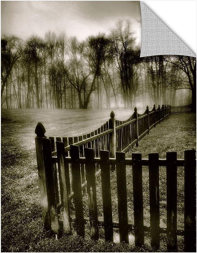 ArtWall Steve Ainsworths Fence in The Fog Art Appeelz Removable Graphic Wall Art 24 x 32