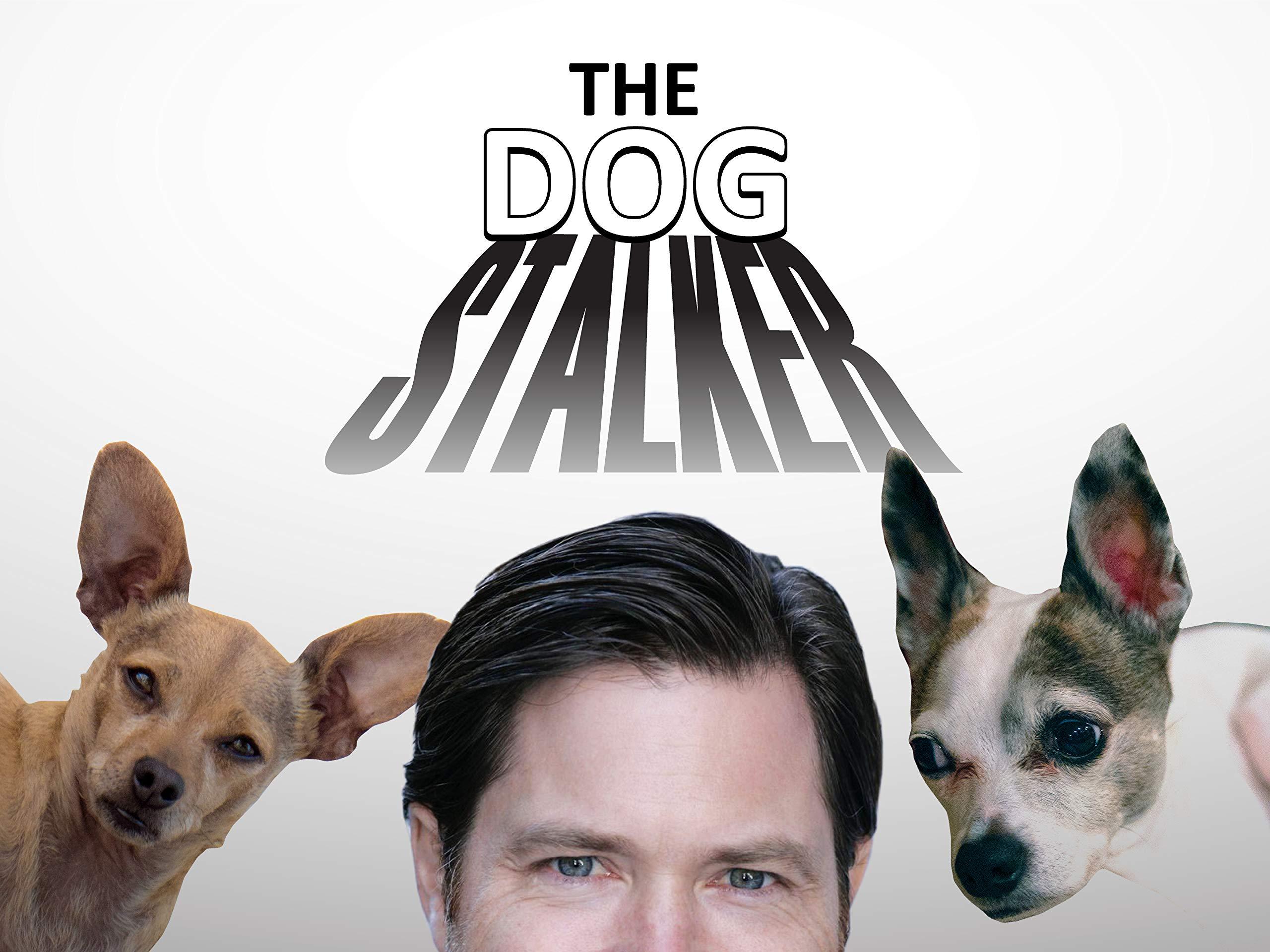 The Dog Stalker - Season 1