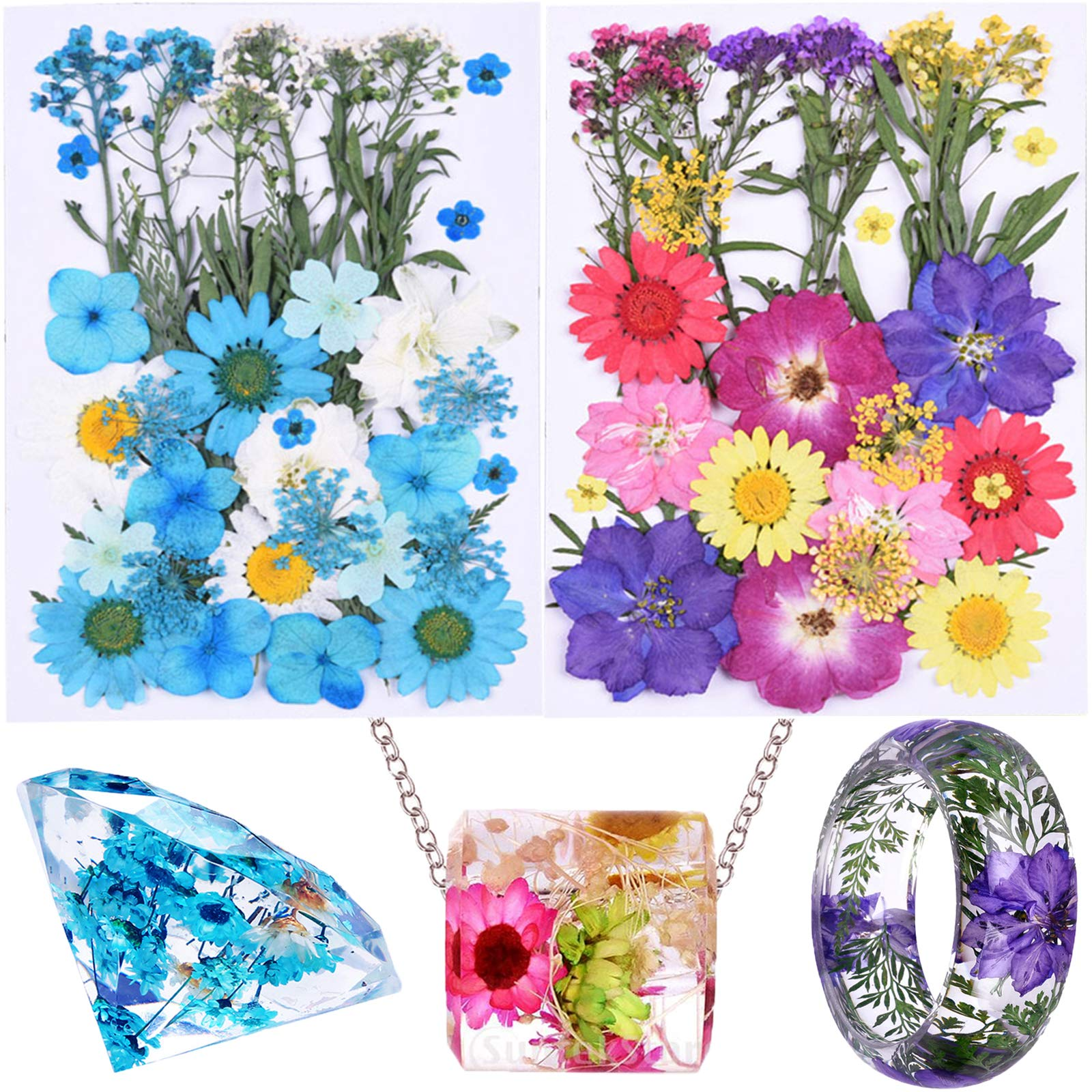 65 Pieces Real Dried Pressed Flowers and Leaves for Resin, Mixed Multiple Resin Flowers Natural Dry Flowers Colorful Daisy, Rose, Narcissus for Resin Jewelry Making,Soap, Candle,Nail Beauty and More