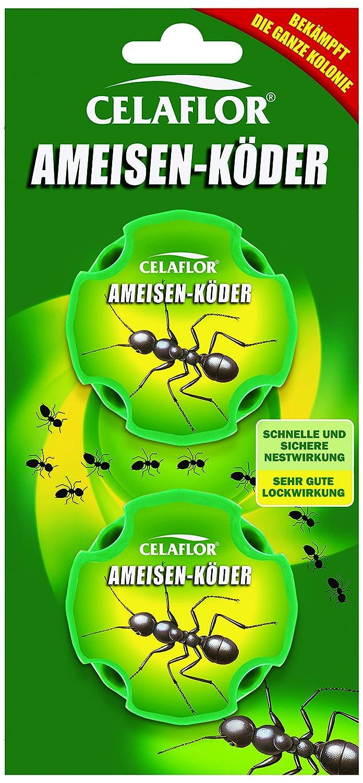 Celaflor Ameisen-Köder, Praktische Köderdose zur Bekämpfung von ...