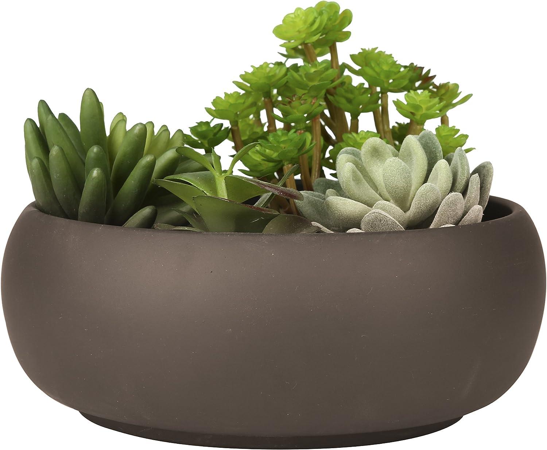 Modern Unglazed Round Ceramic Succulent Cactus Planter Pot with Brown Matte Finish