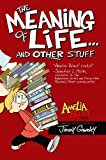The Meaning of Life . . . and Other Stuff (Amelia Rules!)
