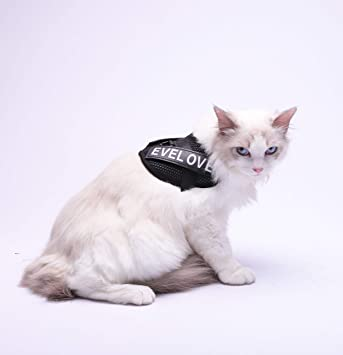 Elf space arnés Ajustable para Gato, arnés para Gatos a Prueba de ...