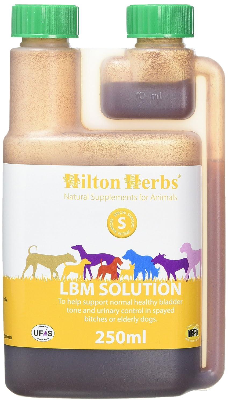 Hilton Herbs LB Solution 250 ml Flacon Complément Alimentaire Chien Fuites Urinaires et Vessie 90392 ayakoh-3883533-42