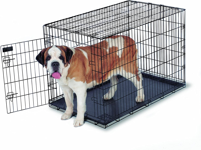 Aspen Pet Home Training Wire Crate, Black