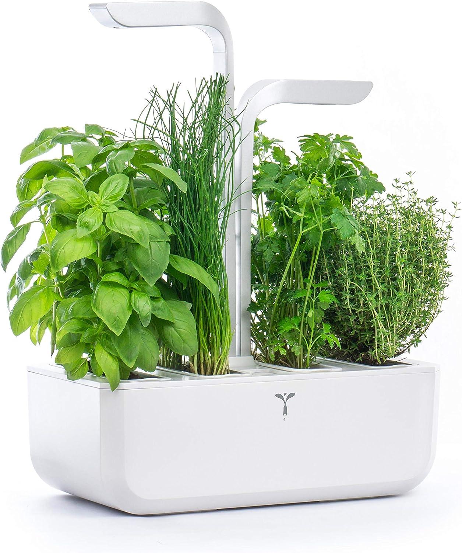 Véritable® Classic (Blanco) - Huerto de Interior Jardín Autónomo Inteligente Viene con 4 Lingots®