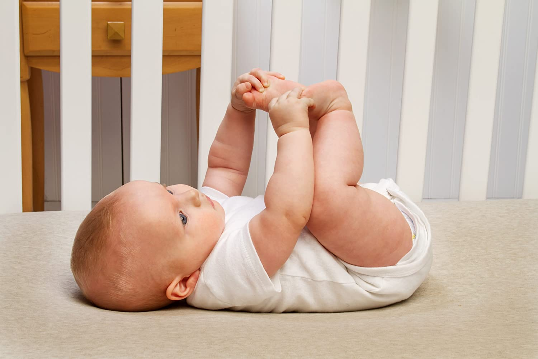Deer Baby Crib Or Toddler Fitted Sheet For Sweet Jojo Woodland Deer Bedding Set