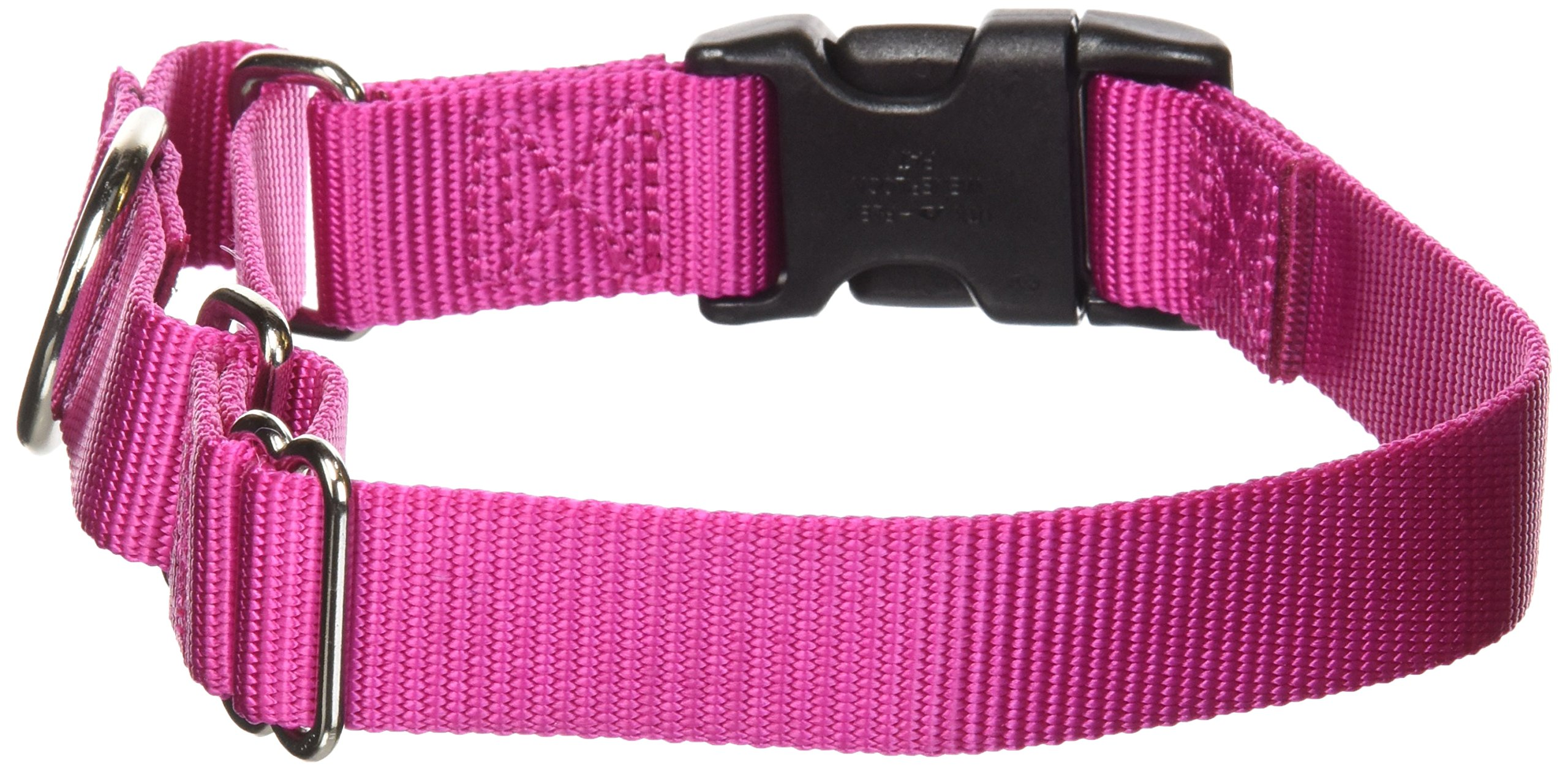 PetSafe Martingale Collar with Quick Snap Buckle, 1'' Medium, Raspberry