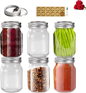 LovoIn Regular Mouth Mason Jars, Canning Jars With Silver Metal Airtight Lids and Bands 6 pack,16 oz Clear Glass Jelly Jars for Dry Food, Honey and Spice,Drinking,Preserving, Meal Prep, Overnight Oats