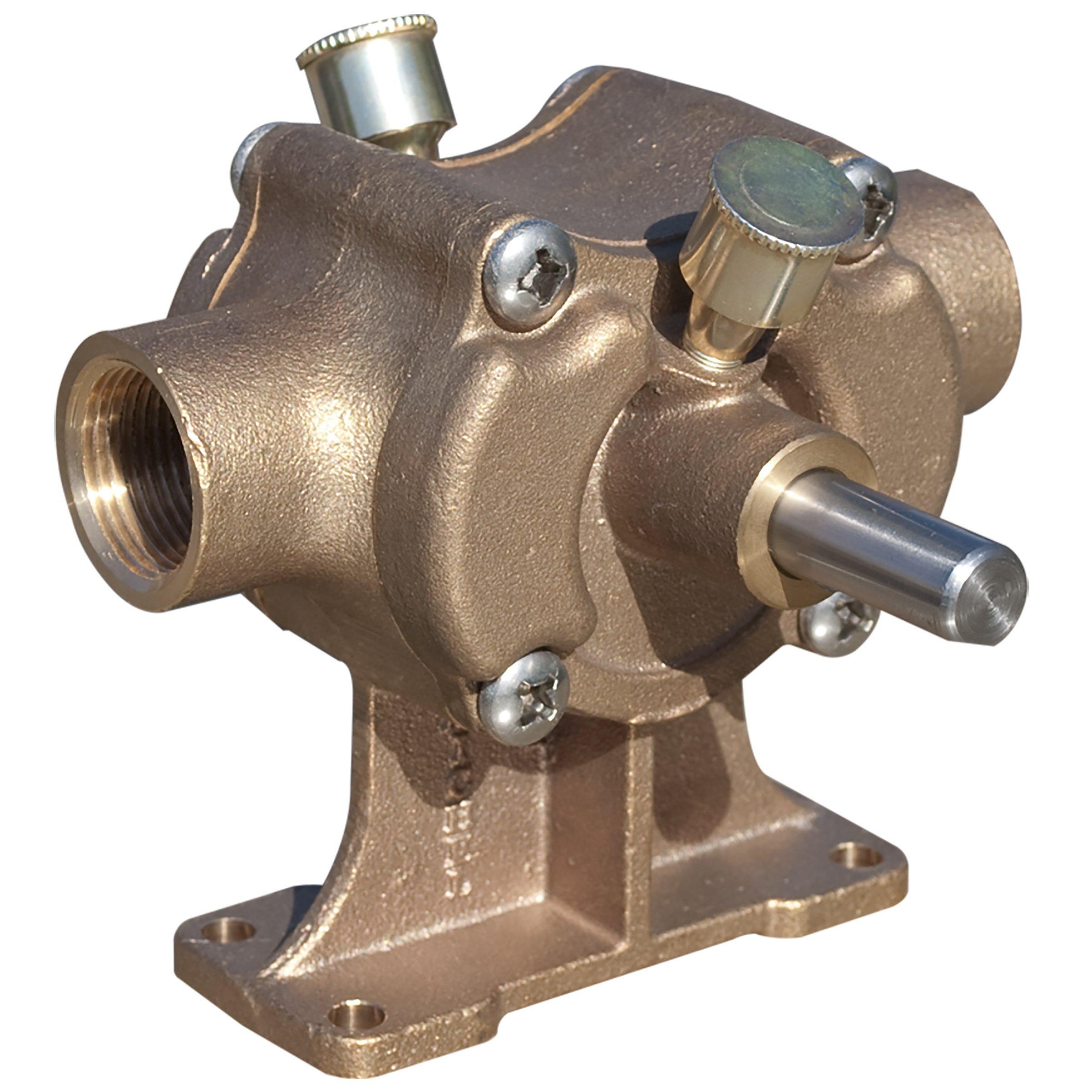 Superior Pump BP21X 1-Inch Bronze Transfer Pump