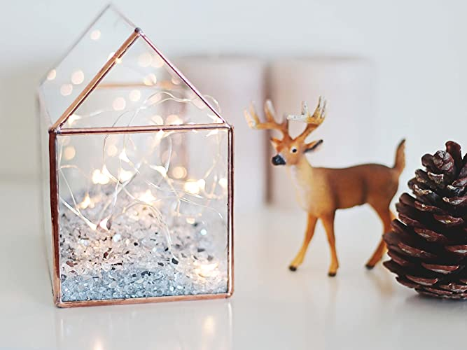Amazoncom Glass House Terrarium Fairy Lights Box Jewelry Box