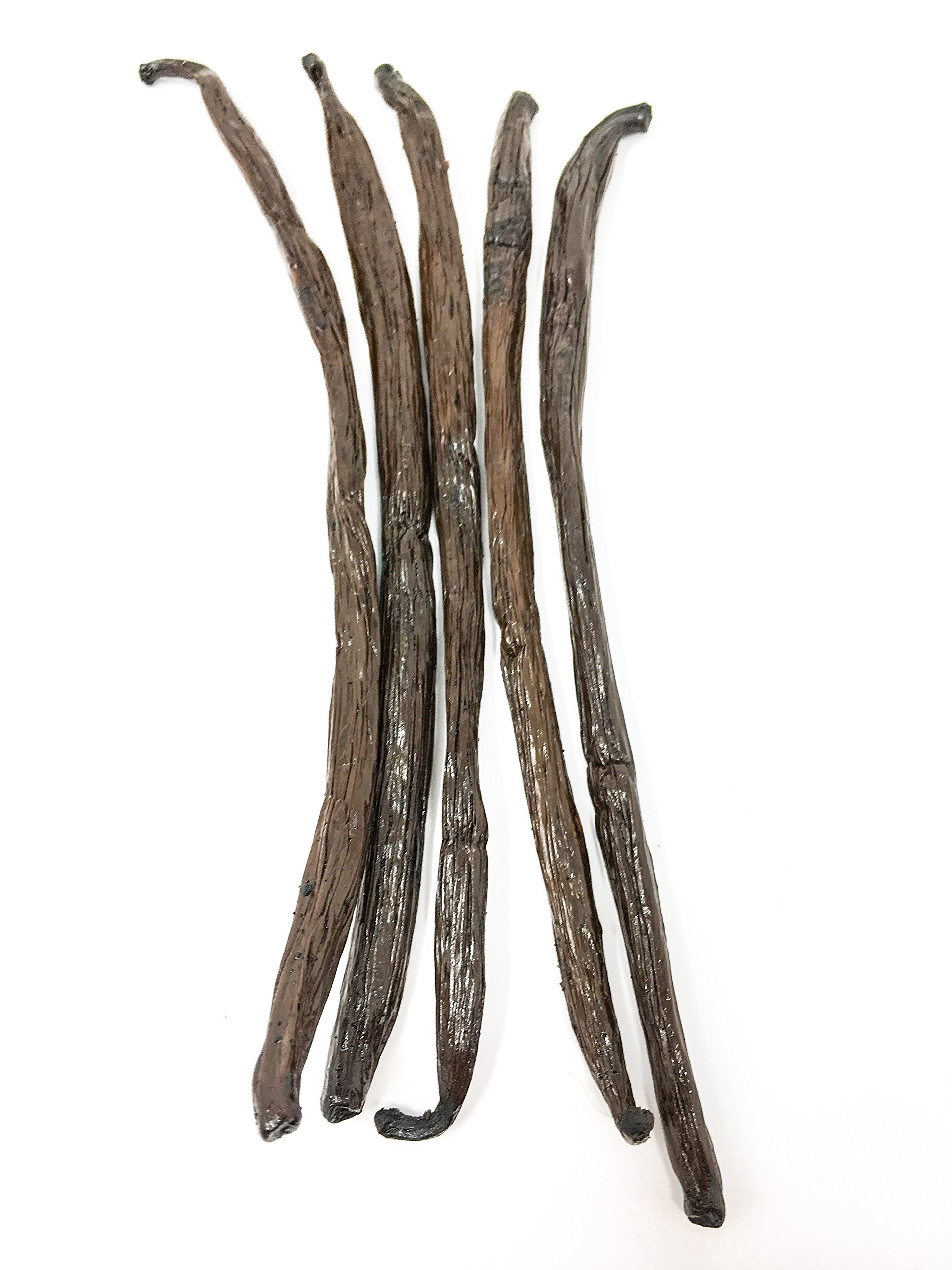 Madagascar Bourbon Vanilla Beans (Vanilla Planifolia) by Slofoodgroup (5 Vanilla Beans)
