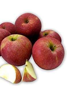 Kauffman Orchards Homegrown Stayman Apples, Fresh-Picked in Lancaster County, Pennsylvania (Box of 8)