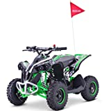 Renegade Race-X 49cc Petrol Mini Quad Bike with Disc Brakes, Front Double Shocks and Mono Rear - Green