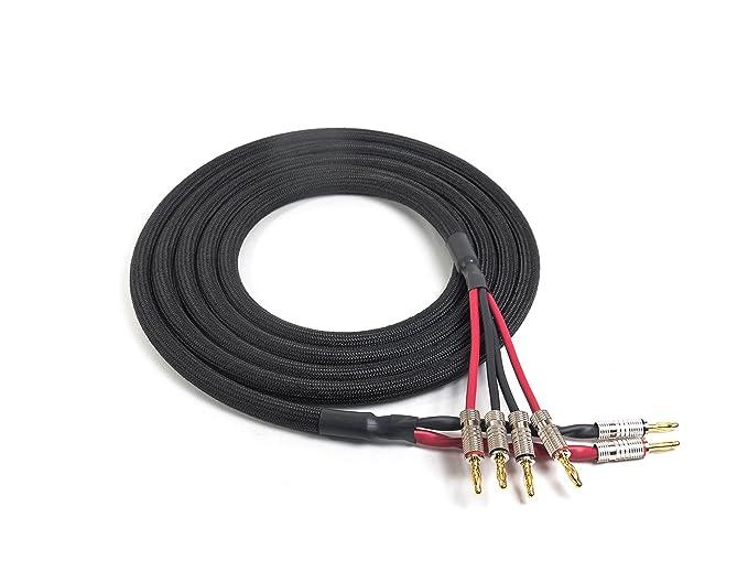 Amazon.com: Canare 4S11 Bi-Wire Speaker Cable (2p to 4p) | Premium ...