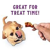 Purina Beggin' Strips Made in USA Facilities Dog