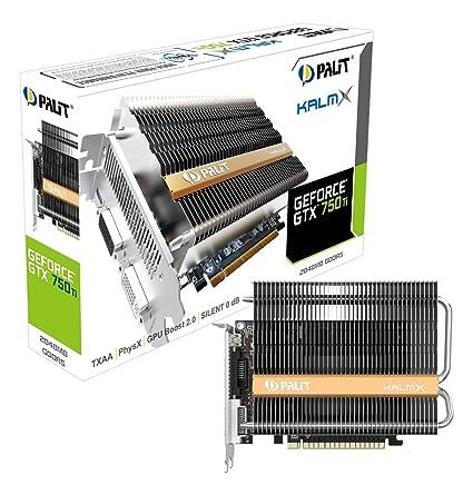 Palit NE5X75T00941H - Tarjeta gráfica (PCI-E GTX750TI KALMX 2048 MB D-DVI/Mini-HDMI Retail)