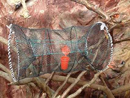 Köderdose!Neu Fischreuse,Aalreuse,Krebsreuse Köderfischreuse,Reusen,Reuse