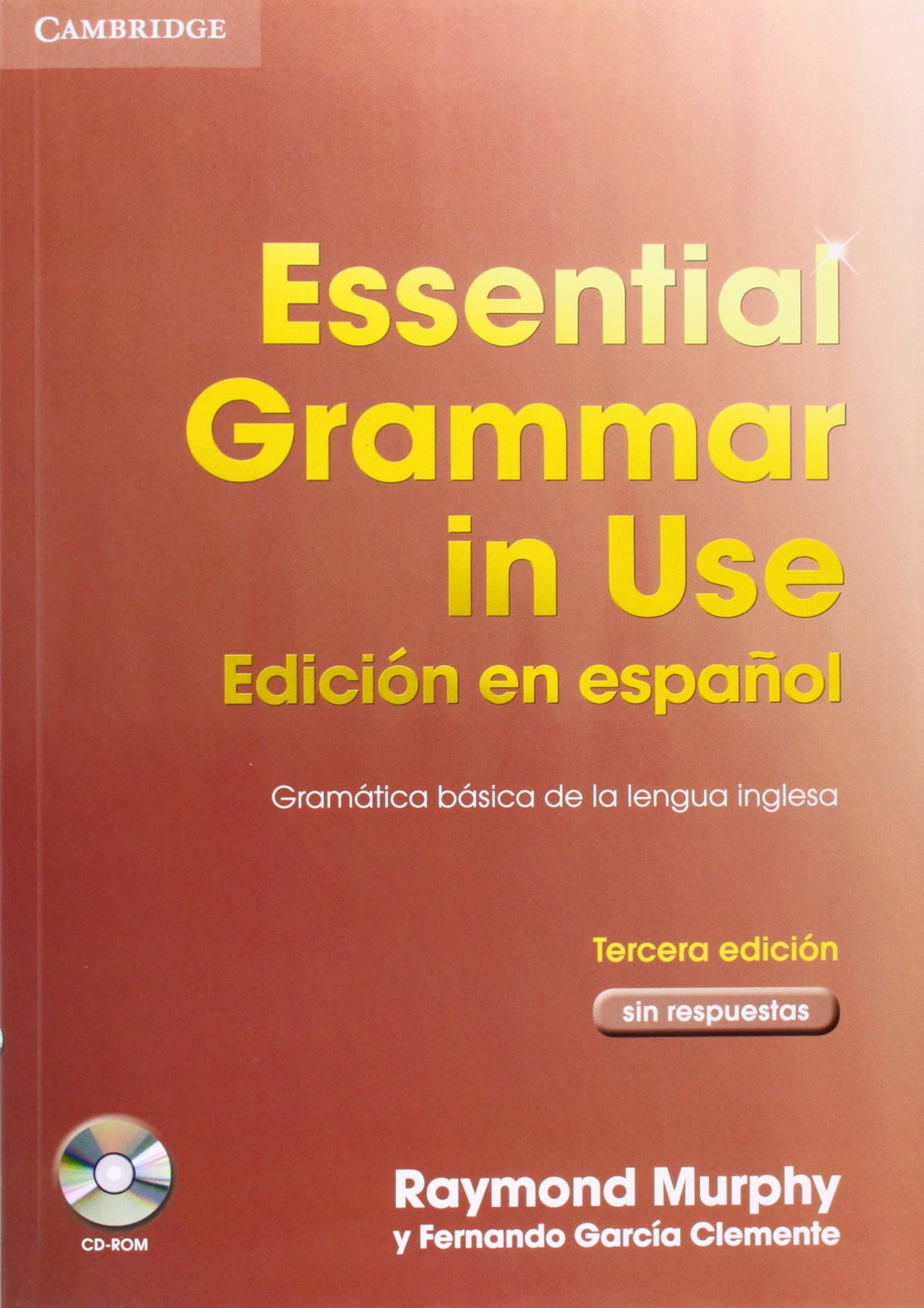 Essential English Grammar In Use Pdf